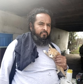 Kitten saved by hoarding cleanout crew